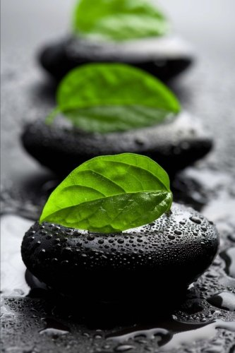 Black Zen Stones with Leaves and Water Drops Journal: 150 page lined notebook/diary -