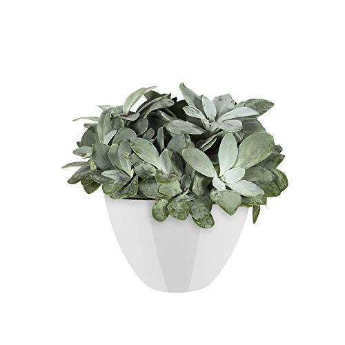 Elho Brussels Diamond Ovale Haut 36 - Pot De Fleurs - Blanc - Intérieur - Ø 35.9 x H 23.5 cm