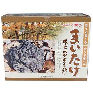 舞茸栽培 マイタケ栽培 【まいたけの成る木(短木)】