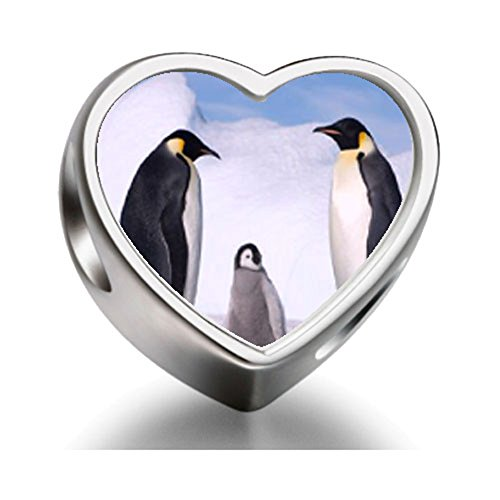 925-sterling-silver-charms-beads-animal-penguin-in-antarctica-heart-photo-charm-beads-bracelets-fit-