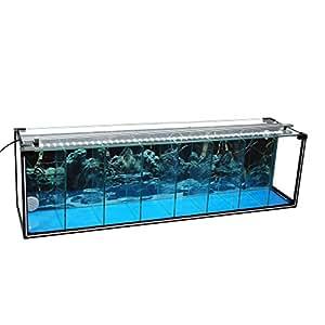 komplettset aquarium zucht becken betta 38 l garnelen aufzucht kampffisch aquarium inkl. Black Bedroom Furniture Sets. Home Design Ideas