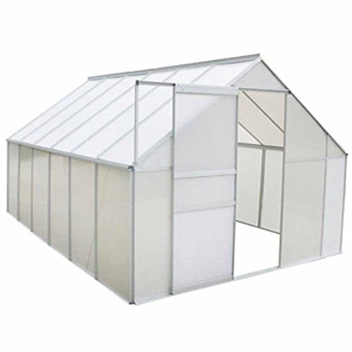 mewmewcat Serre de Jardin Polycarbonate Pas Chere et Aluminium 430 x 250 x 195 cm