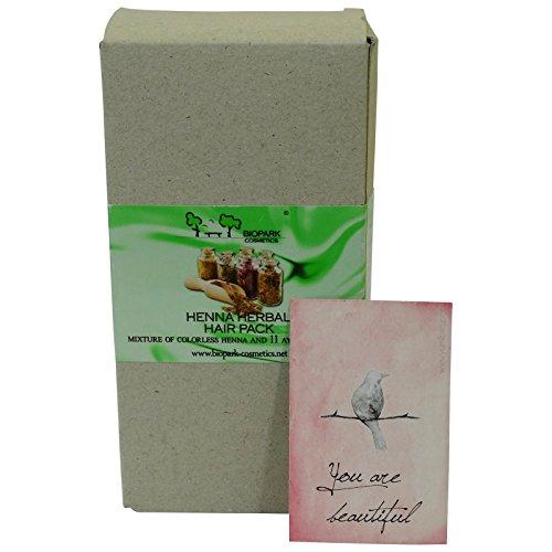 biopark-trattamento-intensivo-in-polvere-maschera-capelli-rinforzante-nutriente-100-gr