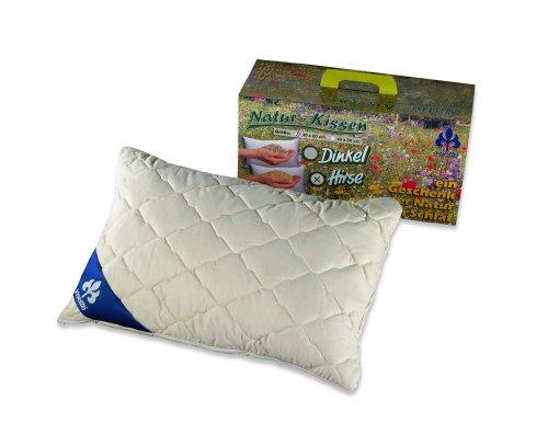 Badenia Bettcomfort 03460100107 Oreiller garni de millet 40 x 60 cm Coton naturel