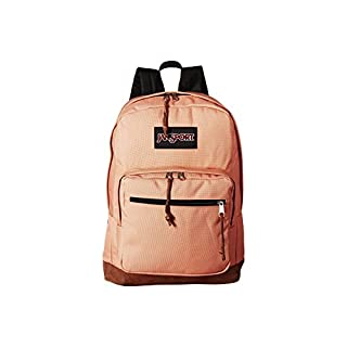 JanSport (One Size, Muted Clay