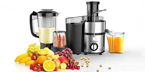 Multifunktionale 3 in 1:Entsafter, Mixer & Schleifmaschine Obst Gemüse Zentrifugal Edelstah Entsafter Maschine Entsafter Smoothie Suppe Rührgerät Samen Kaffee Pfeffer Salzmühle Entsafter für Gemüse