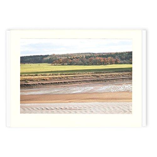 color Low de felicitación Gloosecap tarjetas Encantador Trail Tide hecho mano a aqwf41YS
