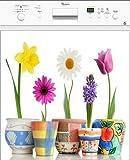Electromenager Beste Deals - Stickersnews - Sticker lave vaisselle électroménager déco Pots de fleurs 60x60cm Réf 178