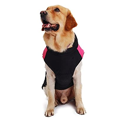 Pet Dog Cold Weather Coat Windproof, PAWZ Road Winter Warm Jacket With D Ring for Harness, Padded Vest Clothes For… 4