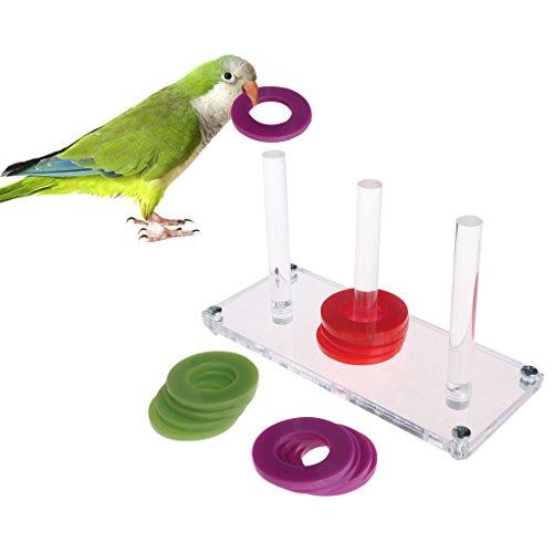 sunhoyu Vogelspielzeug für Papageien, helle Farbe Papagei Spielzeug entwickeln Vogel Intelligenz Ring Zug pädagogisches Wachstum - Pädagogische Zug