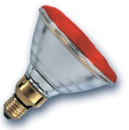 Wells Geflügel 175W PAR38Infrarot Wärme Lampe Birne