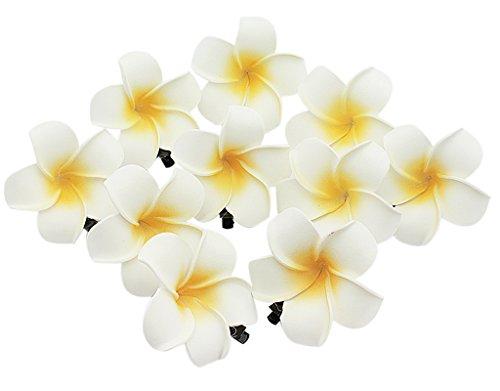 BONAMART ® 10 Stück Baby Kind Mädchen Kinder Blumen Haarspangen Plumeria Haarschmuck - ausverkauf angebote