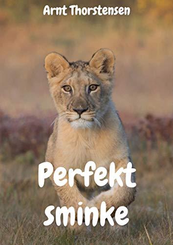 Perfekt sminke (Norwegian Edition) por Arnt  Thorstensen