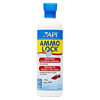 API AMMO-LOCK Freshwater and Saltwater Aquarium Ammonia Detoxifier 473 ml Bottle 14