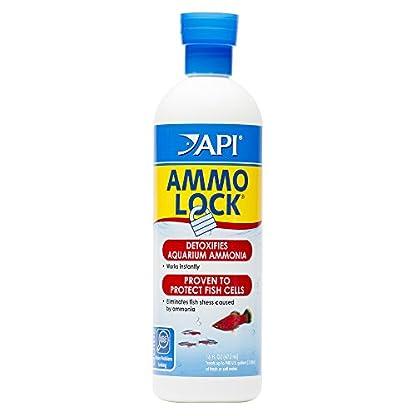 API AMMO-LOCK Freshwater and Saltwater Aquarium Ammonia Detoxifier 473 ml Bottle 1