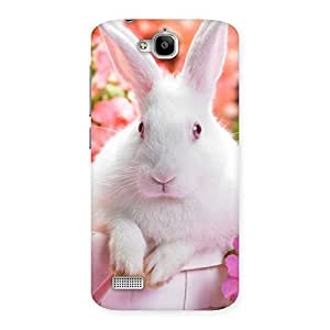 Spring Hare Back Case Cover for Honor Holly
