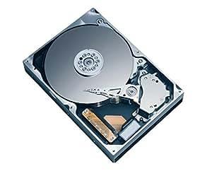 Hitachi HDT725025VLA380 250GB Hard Drive