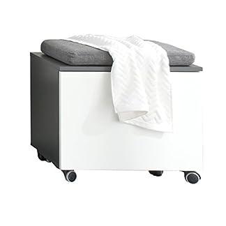trendteam 1438-572-03 baño asiento portacontenedores Beach, 55 x 47 x 34 cm, cuerpo de color gris resinas y parte central blanco brillante
