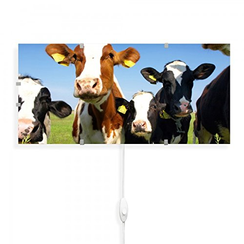banjado - Wandlampe 56cmx26cm Design Wandleuchte Lampe LED mit Wechselscheibe und Motiv Kühe, Wandlampe mit 2x 6W LED Leuchtmittel