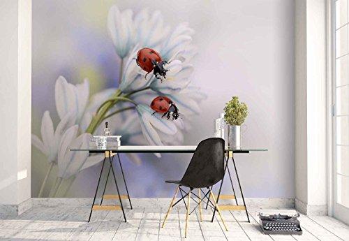omural - Wandbild - Tapete - Schneeglöckchen Blume Marienkäfer Makro - Thema Blumen - L - 254cm x 184cm (BxH) - 2 Teilig - Gedrückt auf 130gsm Vlies - 1X-146565V4 ()