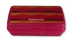 Tupperware Big sandwich keeper with Aztec theme prints