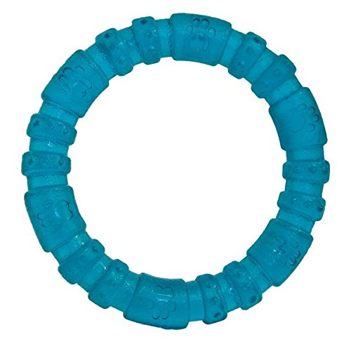 biosafe-cachorro-anillo