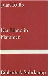 Der Llano in Flammen.