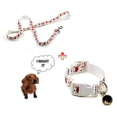 Treat Me Hundehalsband mit Leine Set Reflektierend Gepolstert mit Glocke Weihnachtsgeschenk Verstellbar Nylon Training Hunde Halsband für Hunde