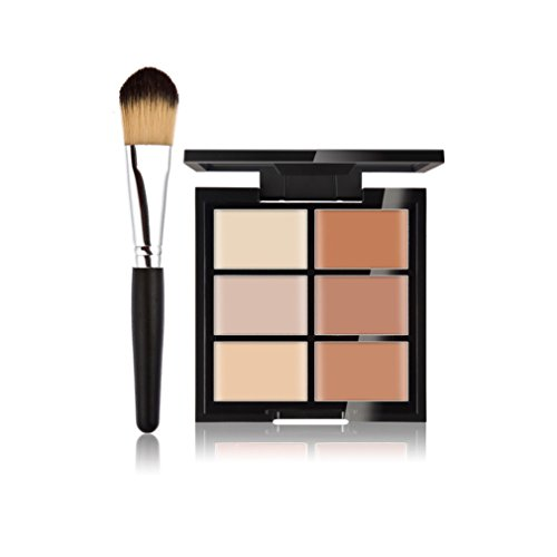 FantasyDay® 6 Farben Creme Concealer Make-up Palette Gesichtscreme Foundation Contouring Abdeckcreme Camouflage Palette Highlighting Cover Abdeck Makeup + 1 Stück Professionelle Foundation Concealer Make-up Pinsel #2