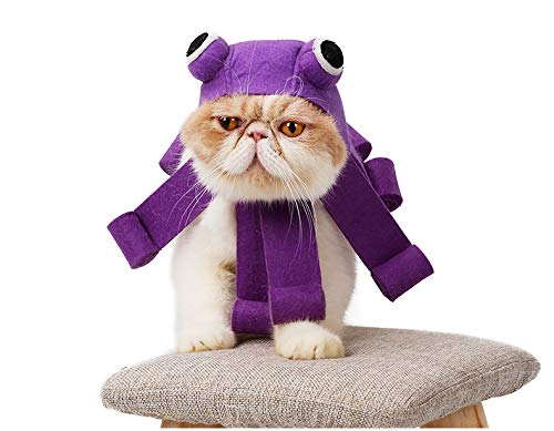 Katze Im Hut Dress Up - JBPX Halloween Cat Dress Up Hut