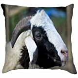 This cushion cover could surely provide a warm, welcoming feeling to your daily life. Printed with a special design, the case is sure to add flavor, texture and depth to your living space. Your cushion in this case will also look great on the dresser...