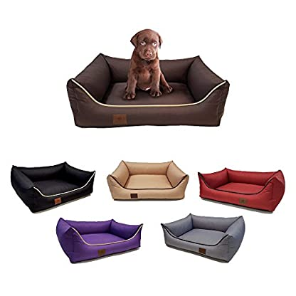 Polysoft Zipped Dog Bed, Size: XXL 95 x 75 Colour: beige ; From the manufacturer, made in the EU; Highest standard and… 1