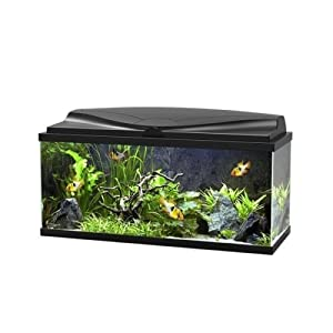 Ciano BLACK Aqua 80 LED Tropical Glass Aquarium – Includes Filter, Lights & Heater 71L