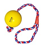 WEPO Hundespielzeug | Schleuder- und Wurfball mit Seil | Aus Robustem Naturgummi (Naturkautschuk) | Das ideale Spielzeug für große und Kleine Hunde | Fördert die Aktivität und den Spieltrieb (gelb)