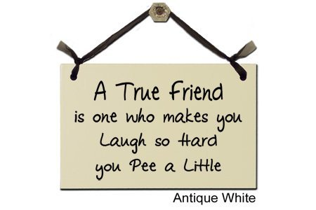 Preisvergleich Produktbild Funny,  Humorous Signs: A true friend is one who makes you laugh so hard you pee a little by Asian Image