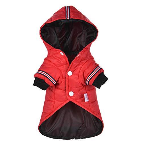 DDG EDMMS Warm Haustierjacke Winter im Freien Wasserdichten Hoodie Jack Kleidung Hundemantel Haustierbedarf rot