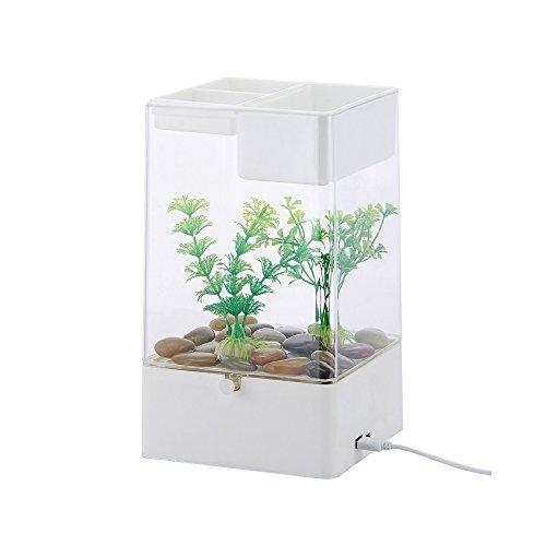 CNMF Kleines Aquarium-Nano Aquarium Kann Pflanzen und Tiere, 2 in 1 Aquarium zu Erhöhen. Verwendet in Büros, Häusern, Restaurants, öffentlichen Plätzen, Etc.