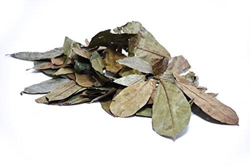 Scopri offerta per Graviola Foglie naturale | 200grammi | Annona muricata | soursop | schonend im Ombra protetto al sole foglie essiccate |