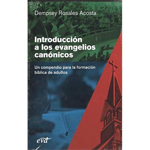 Introducción a los evangelios canónicos: Un compendio para la formación bíblica de adultos
