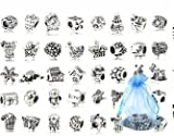BeautyLife 40 Pc placcati argento antico di metallo ossidato Perline Charms Set Mix Lotto - Compatibile con Pandora Biagi Troll Chamilia Bracciali
