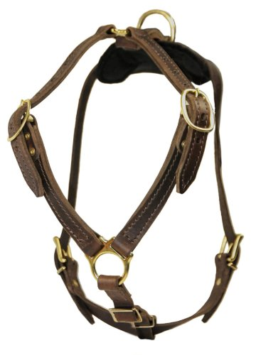 Dean-Tyler-DT-Tylers-Buckles-SB-L-Tylers-Choice-Solid-Brass-Belt-Style-Buckles-Dog-Harness-Large-Fits-Girth-81cm-to-99cm-Black