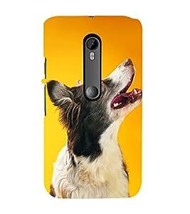 99Sublimation Dog Looking Up 3D Hard Polycarbonate Back Case Cover for Motorola Moto G3 :: G 3rd Gen :: G Gen 3 :: G Dual SIM 3rd Gen :: G3 Dual SIM