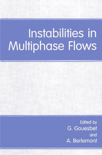Instabilities in Multiphase Flows (Duquesne Studies: Language and)