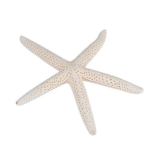 VRTUR: 1 Pieza 10 – 12 cm Blanco Natural de los Dedos del mar Estrella de Boda decoración Estilo océano