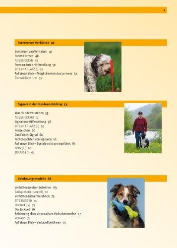 Hundeschule:  Verhalten formen mit dem Clicker - 3