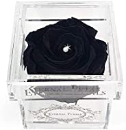 A Real Rose That Lasts A Year - White Gold Solo with Swarovski Crystal