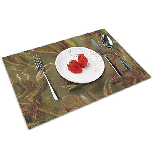 Aeykis Tischsets 4er Set Acalypha 1 hitzebeständige Tischsets waschbar Tischmatten für Küche Esstisch
