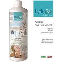 AquaSal, mezcla con alta concentración de sales de magnesio, potasio y yodo de alta actividad biológica para spas, jacuzzis y piscinas, 1 litro -