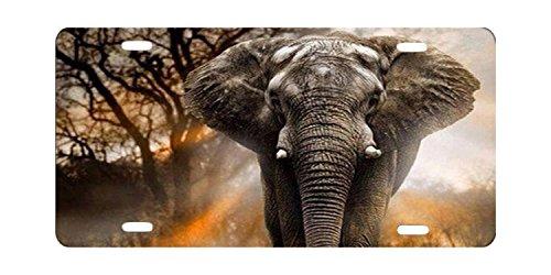 DQVWGK Elefant Tiere Custom Aluminium License Plate Frames für Auto License Plate Cover mit 4Löchern Auto-Tag 15,2x 30,5cm