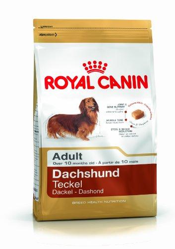 Royal Canin Dachshund 28 Adult Hundefutter 7.5 kg, 1er Pack (1 x 7.5 kg)